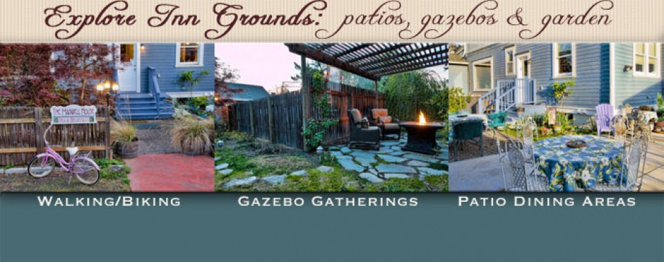 Explore grounds, gardens and patios at the Maxwell House